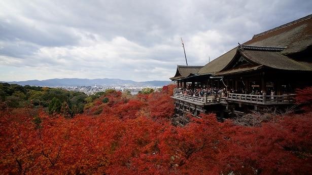 que visiter à kyoto