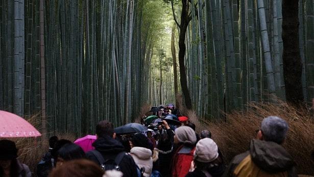 que visiter à kyoto (37)
