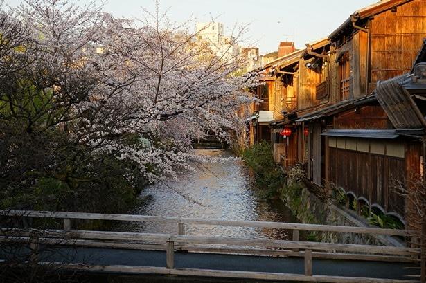 que visiter à kyoto (85)
